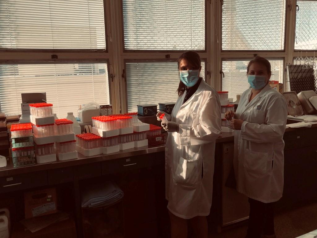 Avant l'arrivée des employés, Stéphanie Desrosiers et Valérie Dion préparent des tubes de saline qui serviront à conserver et transporter les écouvillons prélevés. Elles passeront ensuite à leurs tâches administratives et de supervision des analyses au laboratoire de microbiologie.