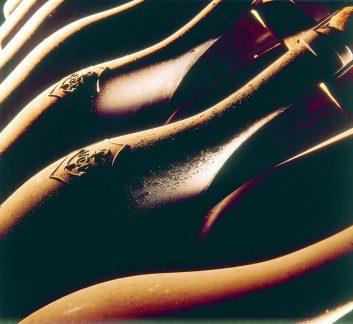 Veuve Clicquot - bouteilles
